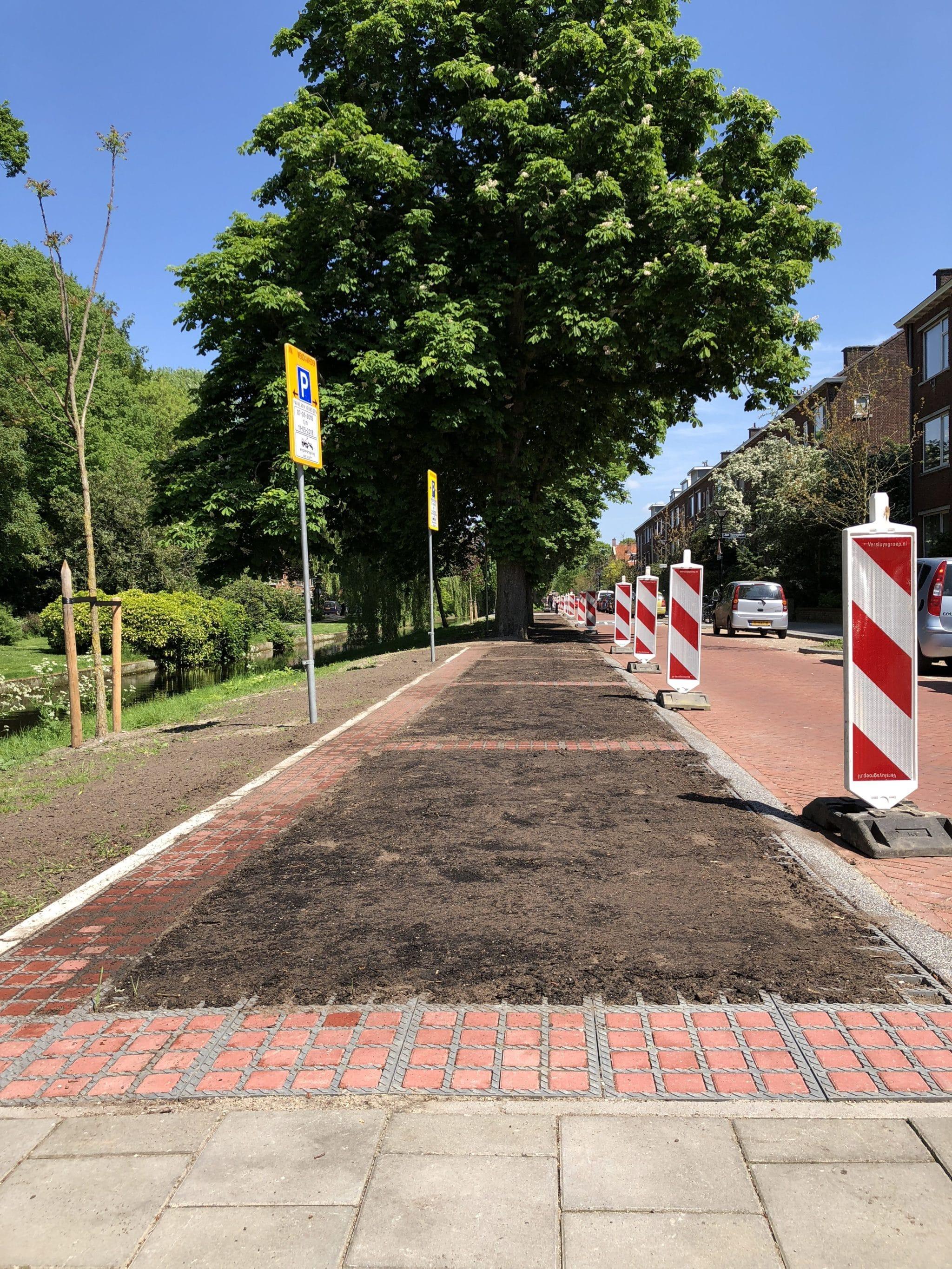 Groene parkeerplaatsen sparen kastanjebomen